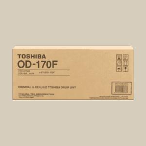 OD-170F 6A000000311